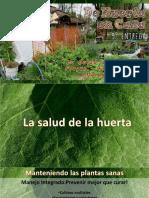 De Huerta en Casa 9º Entrega - La Salud de La Huerta