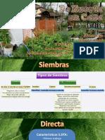 De Huerta en Casa 5º Entrega - Siembra