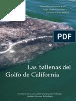 Las Ballenas del Golfo de California - Ruiz et al 2006