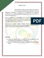MicroBiologiA bacterias y hongos