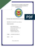 Informe de Auditoria Por Componentes de Los Estados Financieros
