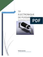 TP 1 Électronique de Puissance