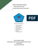 Laporan Praktikum Kimia Fixxx(1)