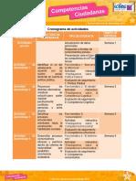 Cronograma_CompetenciasC(2)