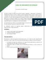 79017777-Practica-de-Microbiologia-General-CURVA-de-CRECIMIENTO-de-HONGOS.docx