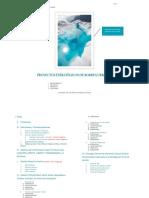 Modelo Informe Final Plani 1 y 2 2018-1