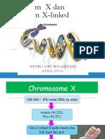 Anatomi Dan Fisiologi Nervus Fasialis