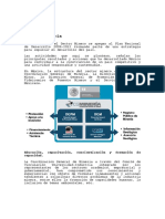 Mineria.pdf