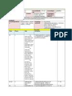 20 Focus 4 Lesson Plan Portfolio 1