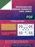 menganalisis Jaringan Berbasis Luas (WAN)