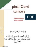 Cord Tumour s1