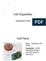 Cell Organelles Review.pdf