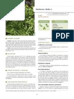Rigat et al. 2018- IECTB Fase 2.pdf