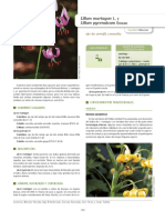 Parada et al. 2018- IECTB Fase 2.pdf