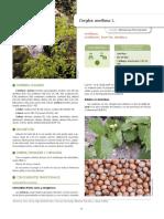 Gras et al. 2018- IECTB Fase 2'.pdf
