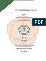 115314009_full.pdf