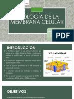 Fisiología de La Membrana Celular (2)