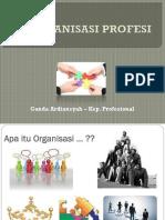 organisasi-profesi