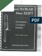 Branimir Slokar + Marc Reift - Flexibility.pdf
