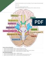Cranial Nerves Summary-1