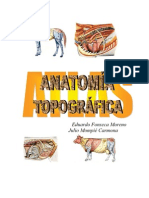 Atlas de Anatomia Topografica