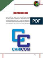 Cuerpo de informe - copia.docx