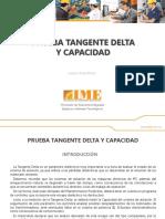Prueba-Tangente-Delta-y-Capacidad---IME-S.A..pdf