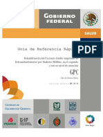 GRR_DIF-257-09.pdf