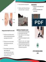 DM PROLANIS.pdf