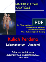 Dr Hawin_Fungsi Endokrin, Prankreas