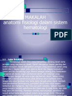 Anatomi Fisiologi Dalam Sistem Hematologi