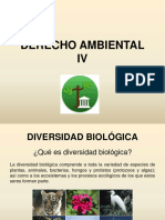 4 - Diapositivas Diversidad Biologica