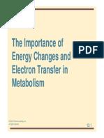 4(M2)BIO462NatureMetabolism.pdf