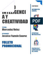 FOLLETO Inteligencia y Creatividad