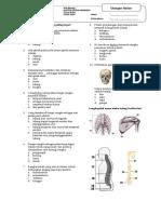 115546584-Uh-Sistem-Gerak.pdf
