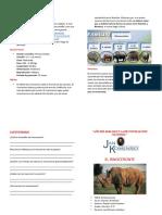 Diptico El Rinocerontee