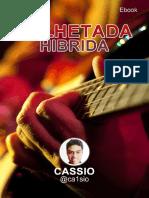 eBook Palhetada Hibrida