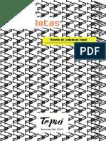 LUDONOTAS.pdf