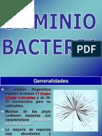Diversidad Bacteria