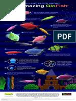 GloFish10FactsV5