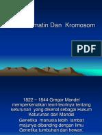 1. Gen Dan Kromatin Dan Kromosom - Copy