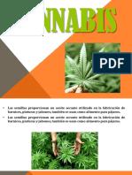 03-acto-juridico (1)