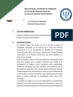 Informe terapeuticas.docx