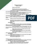 edoc.site_cabeza-y-cuello.pdf