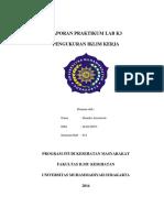 332058523-Laporan-Praktikum-Lab-k3-Iklim-Kerja.docx