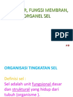 STR,FGS MBR,&ORGANEL-1a