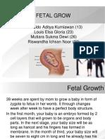 Fetal Grow