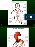 Enf coronaria