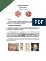 aula6_EAo.pdf