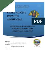 Problemas Ambientales en El Perú